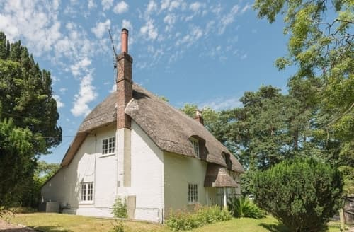 Last Minute Cottages - Splendid Ringwood Cottage S37350