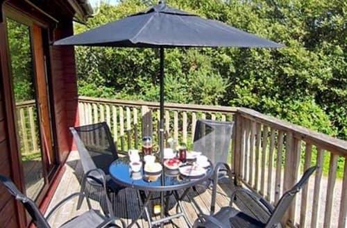 Big Cottages - Splendid Hartland Lodge S19116
