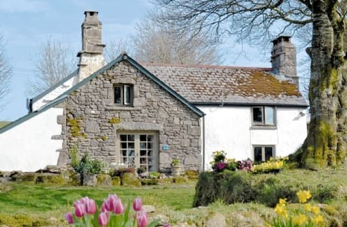Last Minute Cottages - Superb Buckfastleigh Lodge S19547