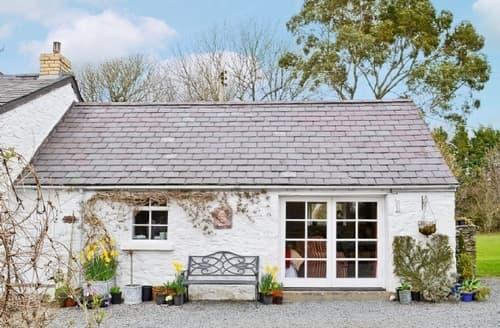 Last Minute Cottages - Gorgeous Aberaeron Cottage S21476