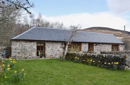 Last Minute Cottages - Attractive Dundee Cottage S22952