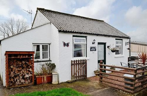 Last Minute Cottages - Tasteful Crackington Haven Cottage S73915