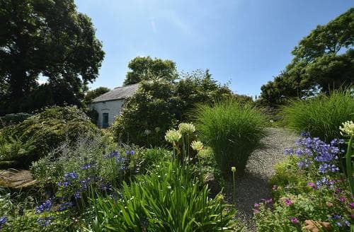 Last Minute Cottages - Y Bwthyn Bach