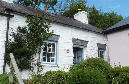 Last Minute Cottages - Attractive St. Dogmaels Cottage S71849