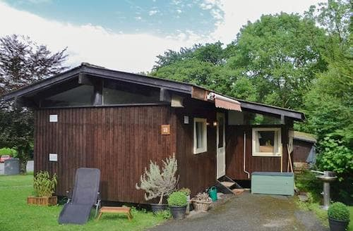 Last Minute Cottages - Adorable Newcastle Emlyn Lodge S84504