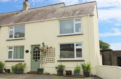 Big Cottages - Attractive Llansaint Cottage S84938