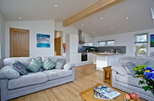 Last Minute Cottages - Beautiful Dobwalls Lodge S85665