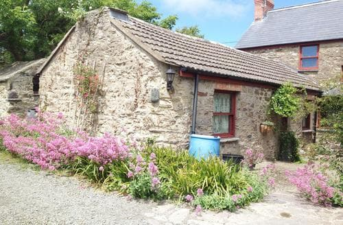 Last Minute Cottages - Excellent Solva Cottage S87722