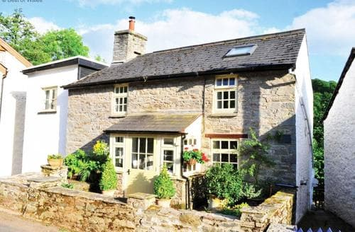 Big Cottages - Cosy Brecon Cottage S87777
