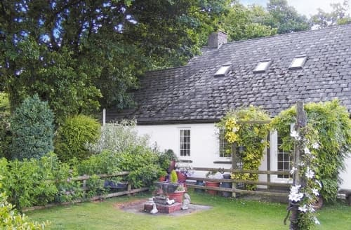 Last Minute Cottages - Excellent Llandovery Cottage S21718