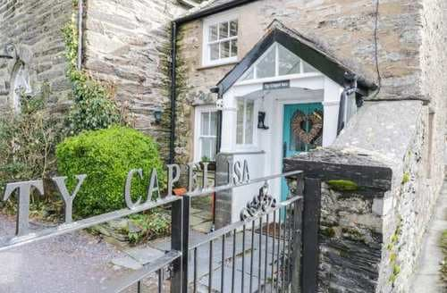 Last Minute Cottages - Gorgeous Dolwyddelan Cottage S94856