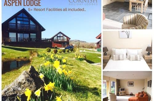 Last Minute Cottages - Cornish Holiday Lodges   Aspen Lodge S99247