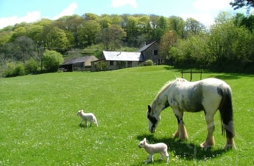 Last Minute Cottages - Riscombe Farm Holiday Cottages   Gorse Cottage S100178