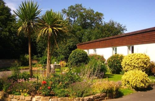 Last Minute Cottages - Primrose Hill Holidays   Beech S100424