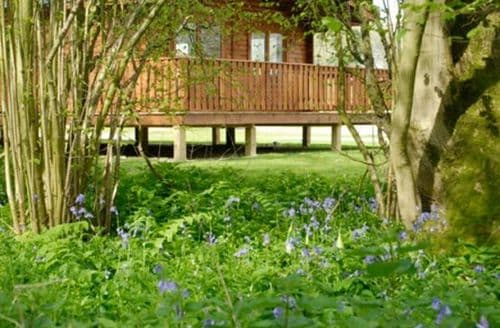 Last Minute Cottages - South Winchester Lodges   3 Bedroom Lodge With Hot Tub S100700