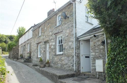 Last Minute Cottages - Inviting Newport Cottage S71871