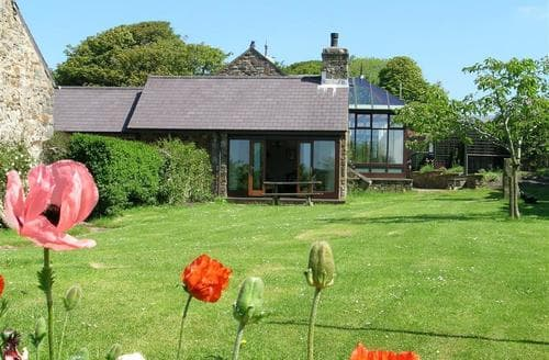 Last Minute Cottages - Lovely Newgale Cottage S71714