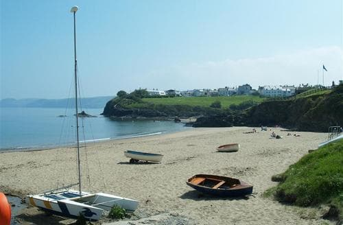 Last Minute Cottages - Inviting Aberporth Cottage S71818
