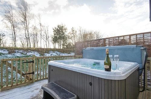 Last Minute Cottages - Inviting Raywell Lodge S108420