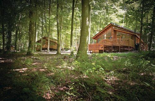 Big Cottages - Delightful Beddgelert Lodge S108641