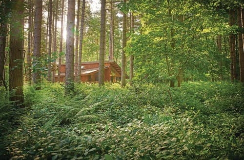 Last Minute Cottages - Wonderful Sherwood Forest Lodge S109164