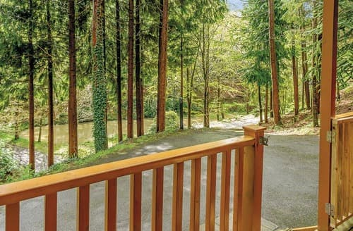 Last Minute Cottages - Stunning Webbery Lodge S109645