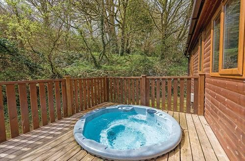 Last Minute Cottages - Wonderful Relubbus Lodge S109667