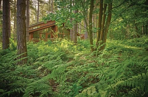 Last Minute Cottages - Exquisite Sherwood Forest Lodge S111391