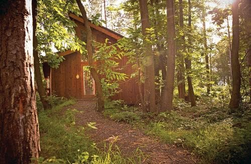 Last Minute Cottages - Captivating Sherwood Forest Lodge S111397