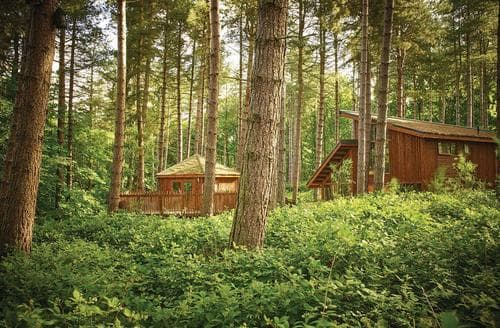 Last Minute Cottages - Inviting Sherwood Forest Lodge S111431