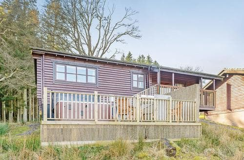 Last Minute Cottages - Delightful Kielder Water And Forest Park Lodge S112452