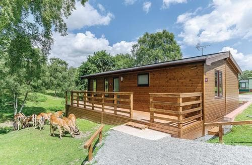 Last Minute Cottages - Charming Cannock Chase Lodge S112941