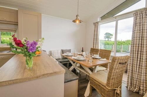 Last Minute Cottages - Charming Hendrerwydd Lodge S113153