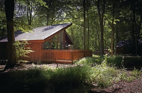Last Minute Cottages - Luxury Micheldever Lodge S114019