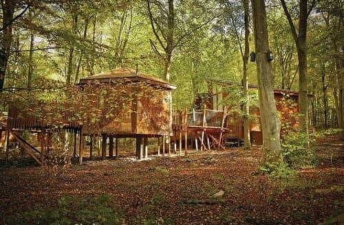 Last Minute Cottages - Forest of Dean Golden Oak Plus Treehouse (Pet)