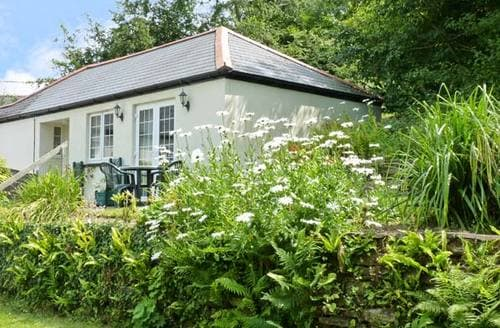Last Minute Cottages - Lovely Gunnislake Cottage S2320