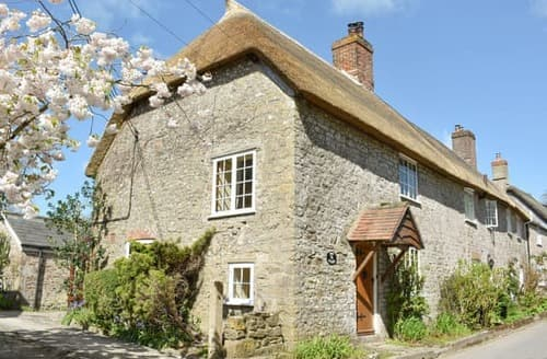 Last Minute Cottages - Wonderful Bridport Cottage S19689