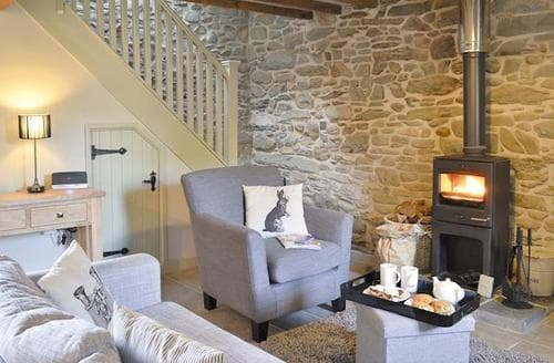 Last Minute Cottages - Inviting Tregaron And The Cambrian Mountains Cottage S41945