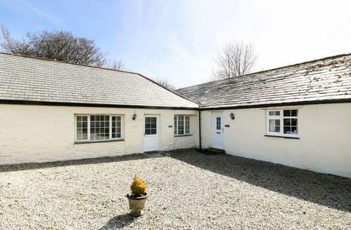 Last Minute Cottages - Quaint Davidstow Cottage S82821