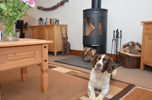 Last Minute Cottages - Tasteful South Brent Bungalow S25136