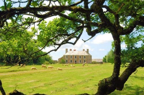 Last Minute Cottages - Captivating Holsworthy House S8945