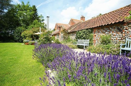 Last Minute Cottages - Wonderful Wickmere Cottage S41732