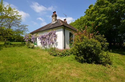 Last Minute Cottages - Quaint West Wellow Cottage S101968