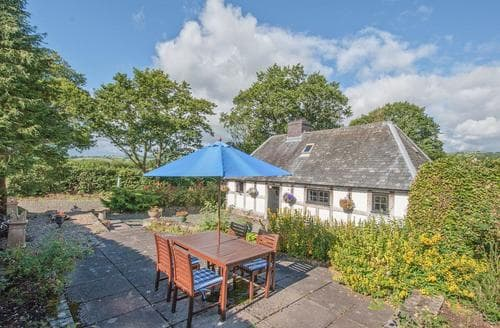 Last Minute Cottages - Cosy Newtown Cottage S21417