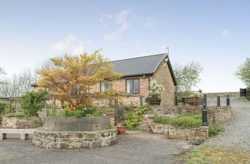 Dog Friendly Cottages - Exquisite Haltwhistle Cottage S14561
