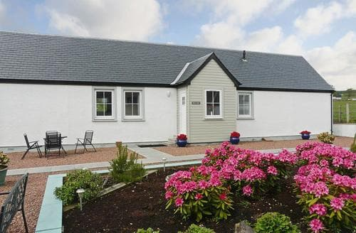 Last Minute Cottages - Inviting Stirling Cottage S23274