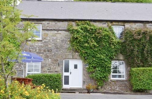 Last Minute Cottages - Felin Fach No 2