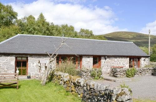 Dog Friendly Cottages - Attractive Dundee Cottage S22952