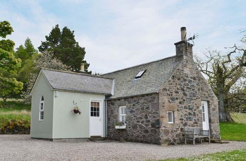 Last Minute Cottages - Excellent Huntly Cottage S22925