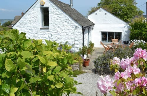 Last Minute Cottages - Splendid Falmouth Cottage S20886